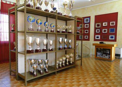 olimpia-store-by-olimpia-snc-dalmine-bergamo-coppe-esposizione-coppe-trofei