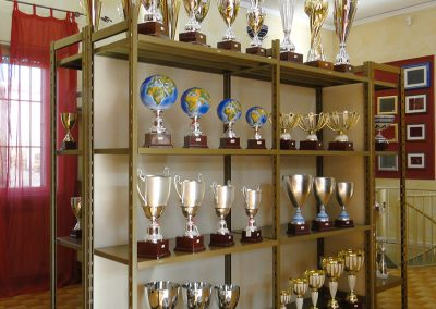 olimpia-store-by-olimpia-snc-dalmine-bergamo-coppe-trofei-in-esposizione